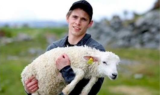 2 Friends Went to The Shore to Relax. But Ended Up Saving A Lamb's Life