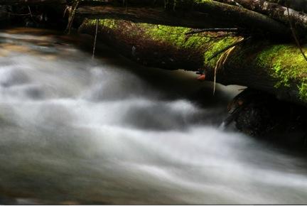 river4.