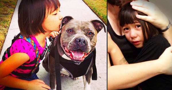 A Naughty Santa Rejected This Nice Girl With Autism Because of Her Pit Bull Service Dog. So Heart Broken!