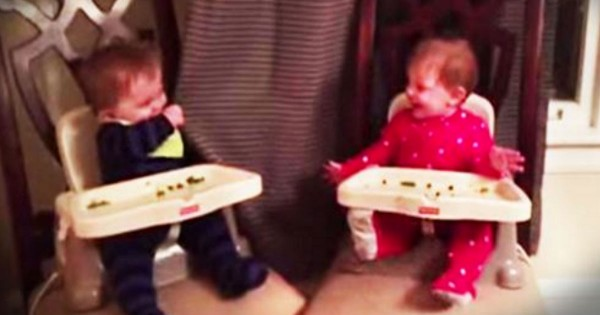 Baby Twins Playing A Sweet Game Of Peek-A-Boo