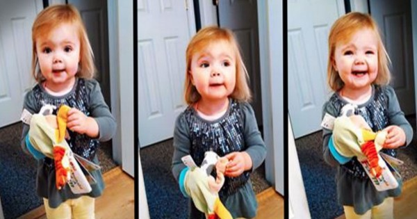 Adorable Toddler Plays With Toy And Sings Old McDonald
