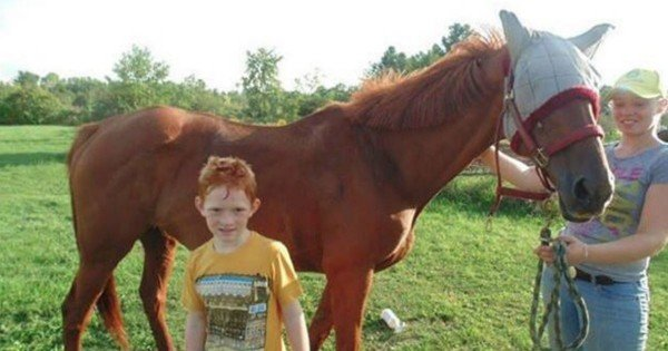 This Poor Race Horse's Days Were Numbered. Until A 9-Year-Old Did THIS To Save Him!