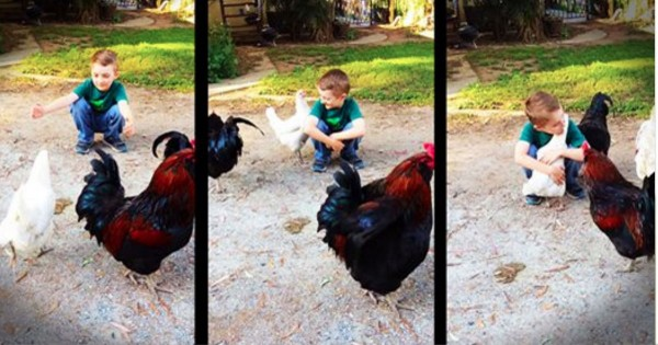 He Got A New Haircut And His BFF Barely Recognized Him. But After A Few Seconds…PRECIOUS!