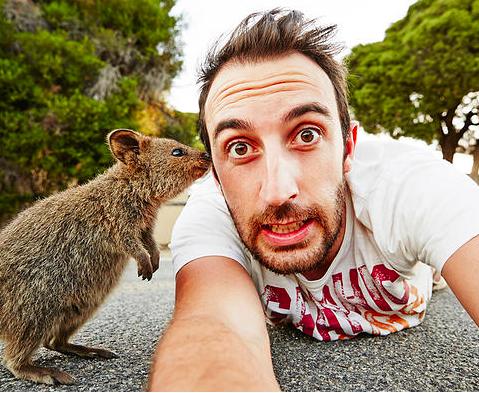 mj-godupdates-quokka-selfies-2