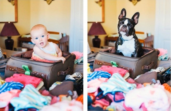 mj-godupdates-dog-and-toddler-side-photos-2