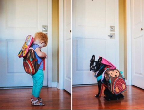 mj-godupdates-dog-and-toddler-side-photos-7