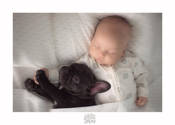 mj-godupdates-baby-and-bulldog-brothers-4