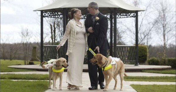 Guide Dog Owners Marry After Their Dogs Fall In Love
