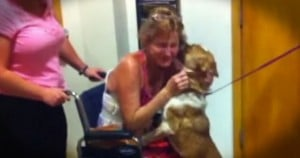 jd-godvine-dog reunited with owner after 65 days in desert-FB