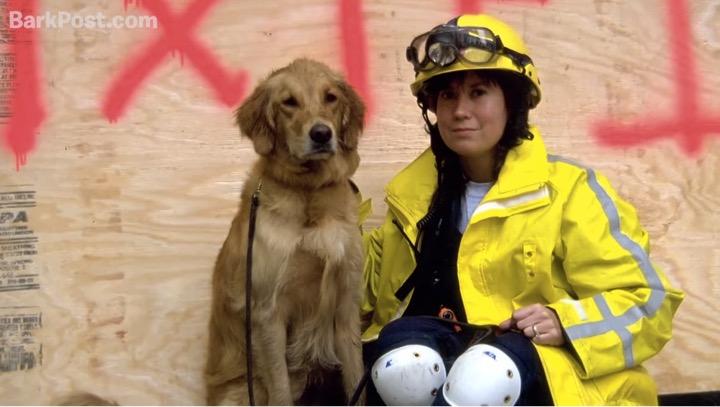 mj-godupdates-911-rescue-dog-honored-3