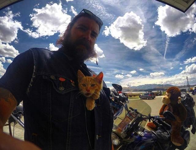mj-godupdates-biker-rescues-kitten-4