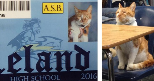 5 Pictures That'll Give You A Whole New Look At 'Back To School' – LOL