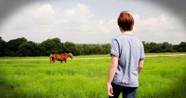 He Was Too Depressed To Move Until He Met This Horse…WOW