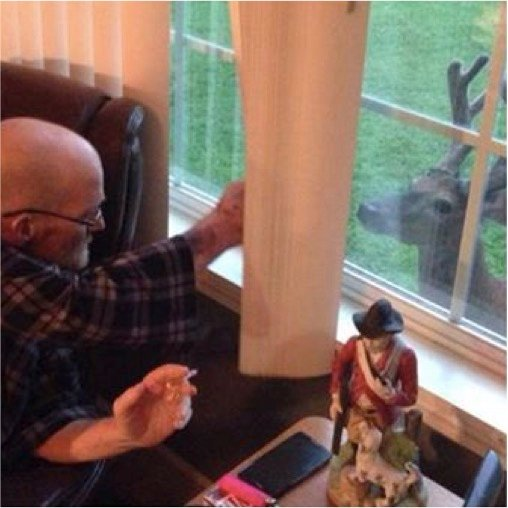 mj-godupdates-deer-visits-dying-dad-1