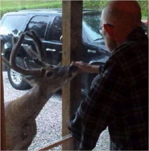 mj-godupdates-deer-visits-dying-dad-2