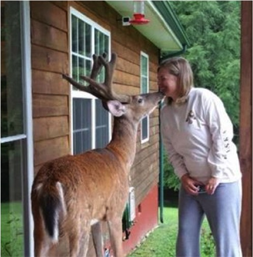 mj-godupdates-deer-visits-dying-dad-3