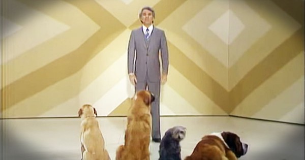 Steve Martin's Comedy Routine For Dogs Is Hilarious…For Humans!
