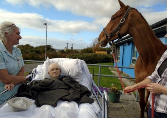 mj-godupdates-dying-man-surprised-with-goodbye-from-beloved-horse-3