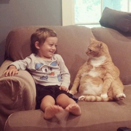 This Little Boy And His Cat Best Friend Are Too Cute For Words
