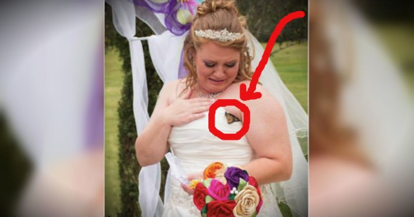Bride Gets A Very Special Sign From Heaven On Her Wedding Day
