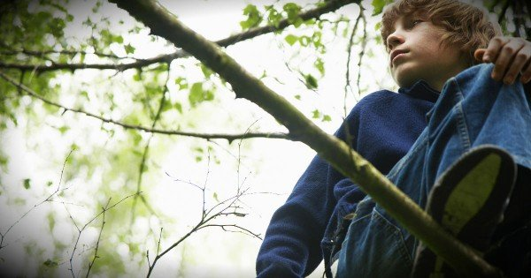 Father Leaves Son In The Woods To Teach Him A Powerful Lesson About God