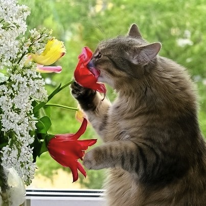 mj-godupdates-20-animals-stop-to-smell-the-roses-4