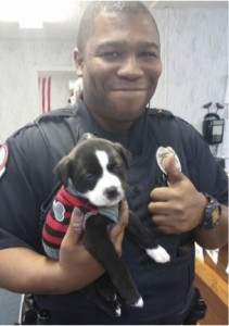 godupdates police officer goes to animal shelter and adopts puppy 1