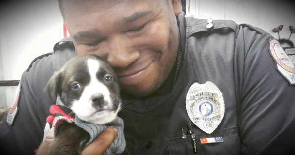 He Walked Into An Animal Shelter On Official Police Business And Fell In Love