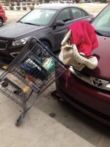 godupdates shopping cart car seat warning 1