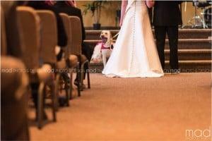 godupdates wedding photo bride and dog 3