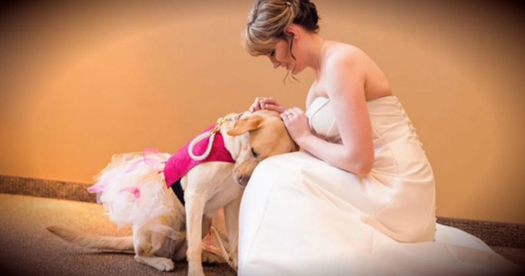 godupdates wedding photo bride and dog fb