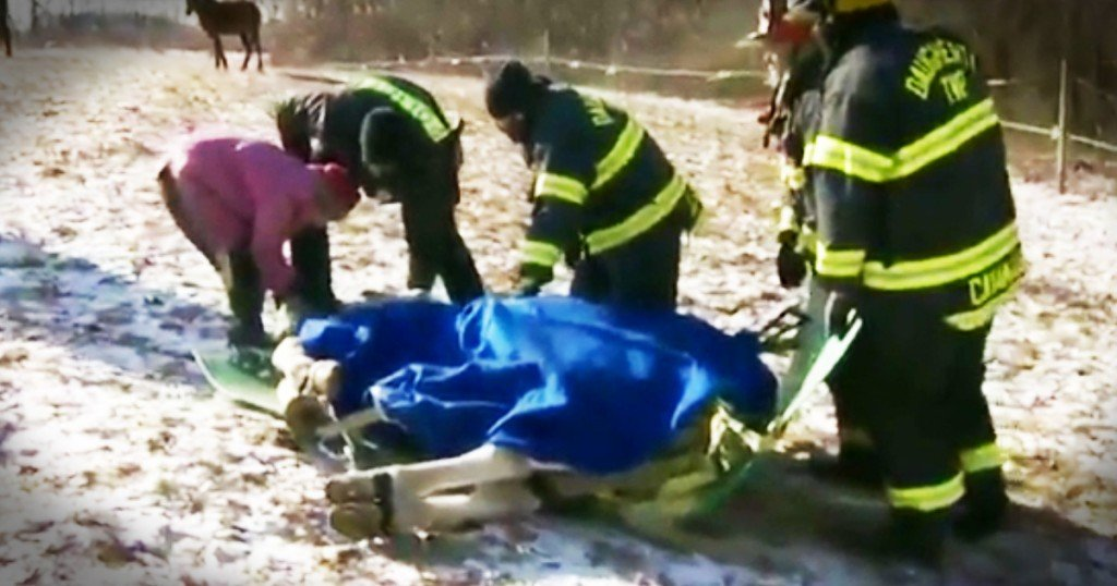 horse gets rescued from ice GodUpdates