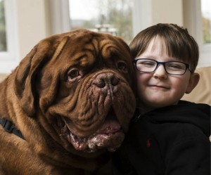 godupdates dog saves 5-year-old boy from blindness 1
