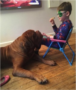 godupdates dog saves 5-year-old boy from blindness 3