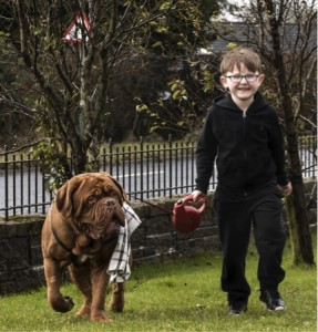 godupdates dog saves 5-year-old boy from blindness 5