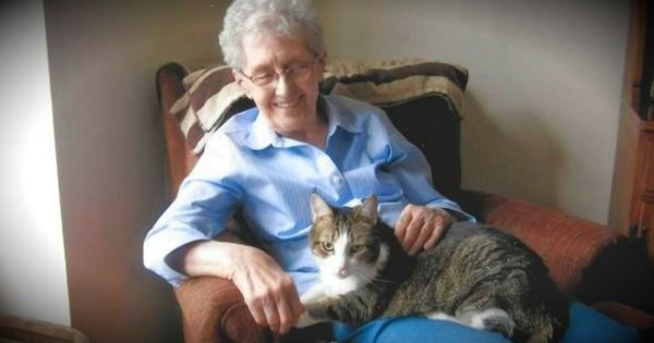 This Grandma And Her Cherished Cat Pass Away Only 4 Hours Apart
