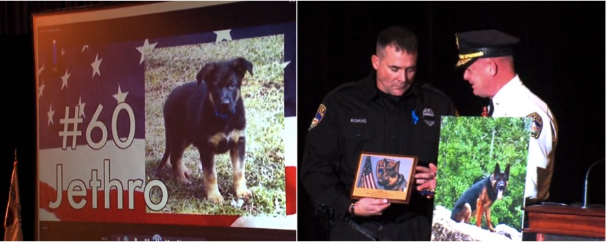 godupdates little girl donates allowance in honor of slain police dog 4