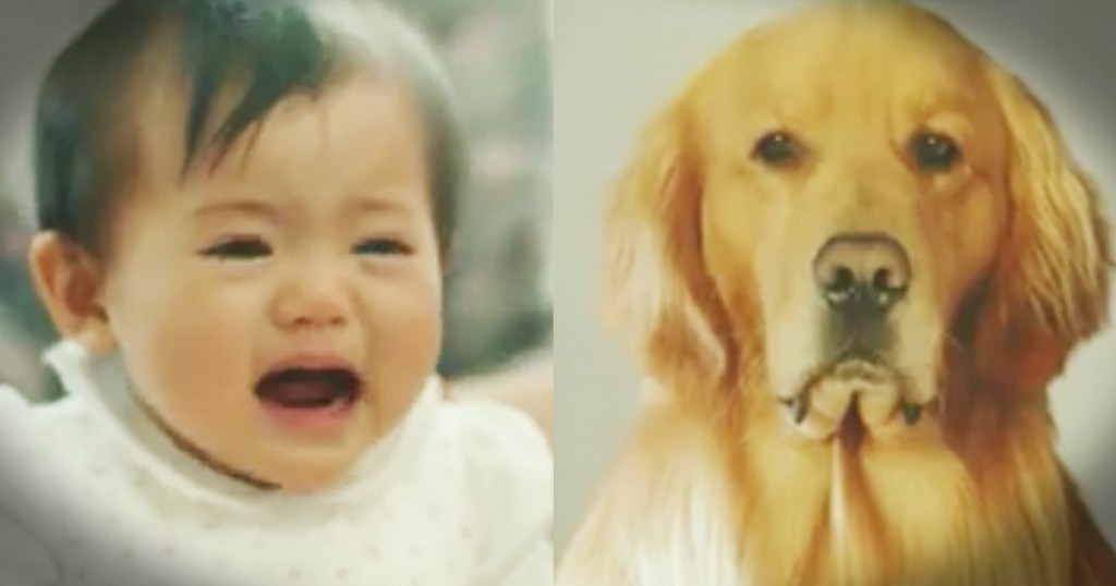 sad dog look like lion for baby amazon ad GodUpdates