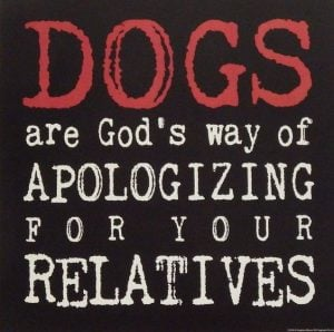 dogs are God's way of apologizing for your relatives - Bible Verses about apologizing