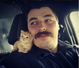 godupdates abandoned kitten rescued by cop with mustache 1