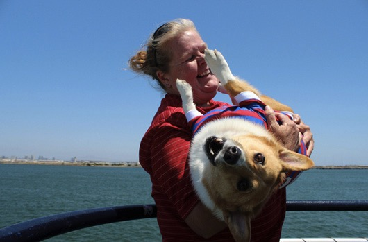 godupdates corgi cruise memorial day 14