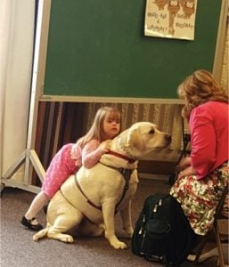 godupdates diabetic alert dog hero saves little girl sadie 3