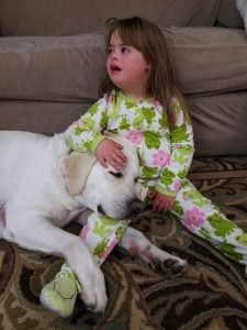 godupdates diabetic alert dog hero saves little girl sadie 6