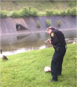 godupdates mother goose leads police to trapped baby 2