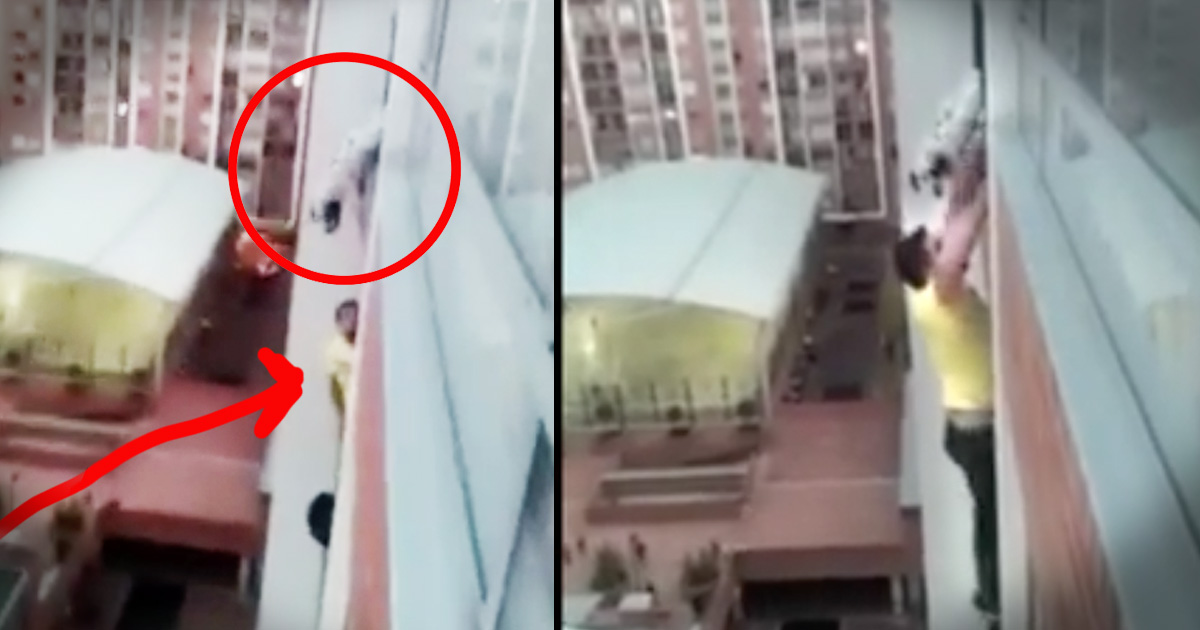 Man rescued dog by climbing up a 13 story apartment building for 13th floor story