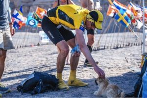 godupdates desert stray dog picks extreme marathon runner as her human 1