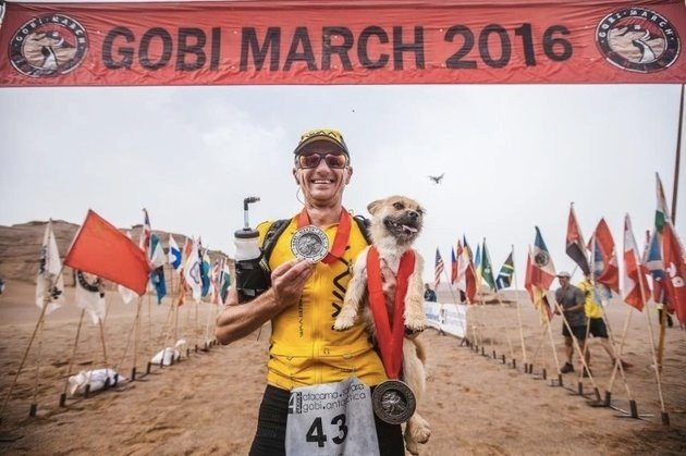 godupdates desert stray dog picks extreme marathon runner as her human 4