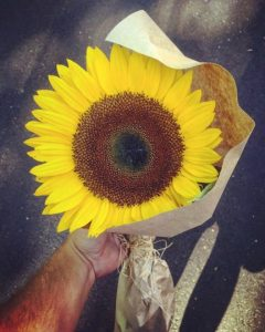 godupdates sunflower for stranger becomes sign from dead fiance 2