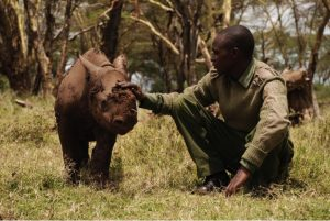 godupdates tiva and lola little girl gets rhino instead of puppy 2