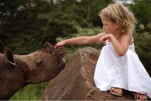 godupdates tiva and lola little girl gets rhino instead of puppy 3